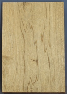 White limba single piece body blank select grade number 4, 43mm thick.