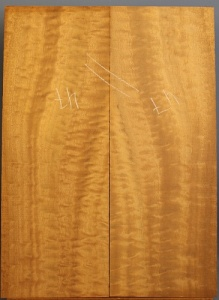 Pommelle sapele guitar top number 47 type 'B'