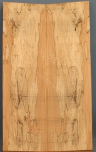 Spalted maple guitar top number 33 type 'B' ripple figure
