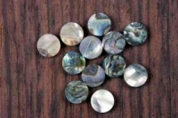 Abalone 6mm dot 10 pack