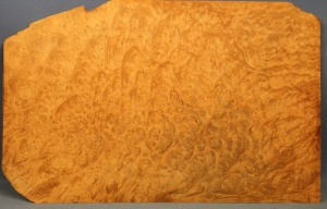 Madrone burr veneer pack 4
