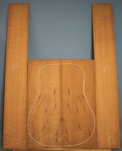 Pommelle sapele guitar back and sides WA** no 19