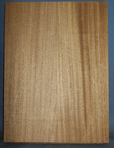 Honduras mahogany two piece body blank no 3