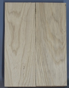 Swamp ash two piece body blank no 21