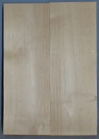 Alder two piece body blank no 10