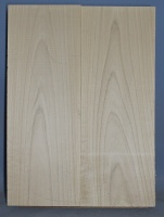 Alder two piece body blank no 12