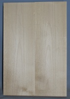 Alder two piece body blank no 1