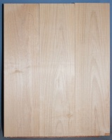 Alder three piece body blank no 19