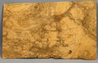 European walnut burr veneer number  3